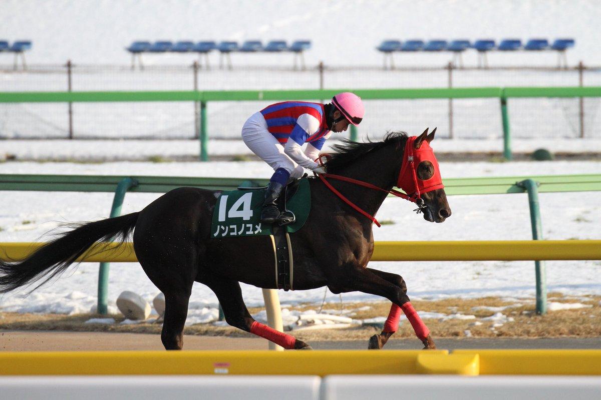 test ツイッターメディア - 根岸S 勝利したのはノンコノユメ。昨日とは変わって、今日の東京のダートは完全に後ろからが有利な馬場でした。内田騎手、ブルドッグボスのがいいんでない?とか言って、すみませんでした!!復活の勝利おめでとうございます!! https://t.co/U3ZUMcHyVq