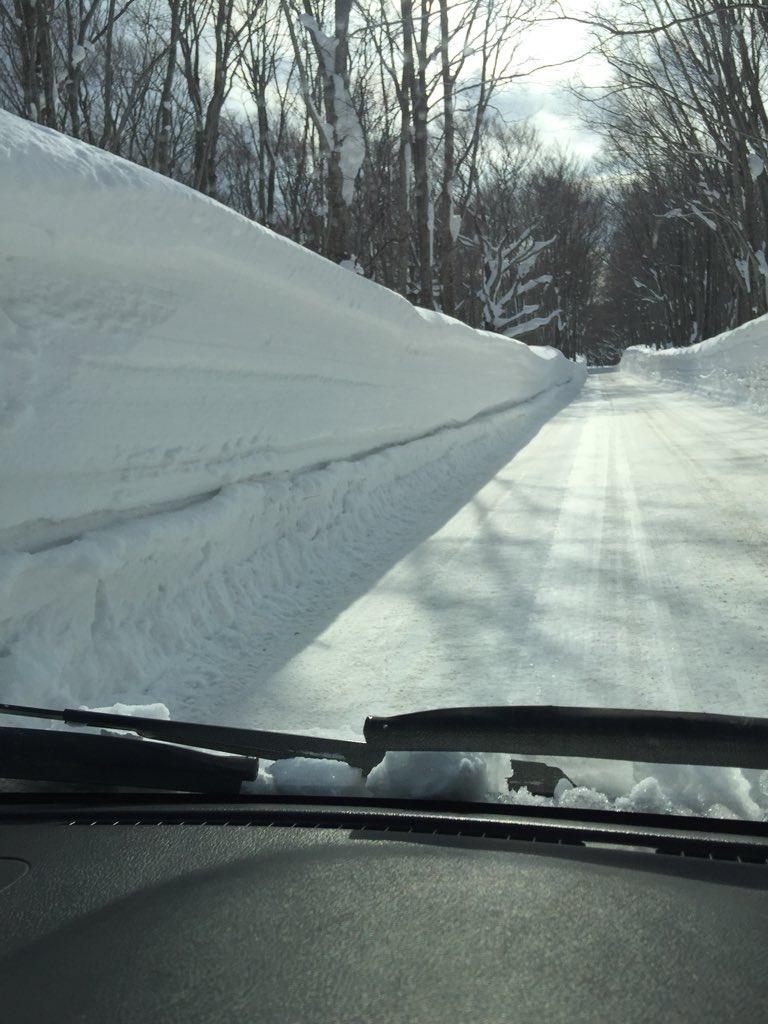 test ツイッターメディア - @hapimoni 小谷大佐、おはようございます!今朝の青森は穏やかな天気ですが、道路脇の雪は3mくらいありますよー!こんな日は爽やかな小谷大佐の笑顔と声、そしていい歌に酔いしれたいです!リクエスト曲は菅田将暉で『さよならエレジー』#hapimoni #jfn https://t.co/UL5iiqUo9H
