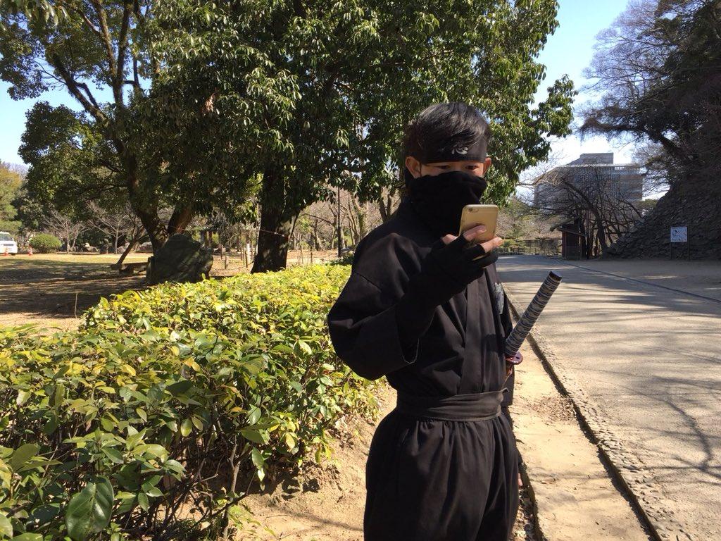 test ツイッターメディア - フォロワーの皆様へ 知ってますか? 和歌山城に 木の小人が存在していることを 某珍百景テレビで MV珍に選ばれたという事実を そう 選ばれし小人を‼︎🧚♂️ を じーっと見ながら 今日も平和にニンニンしてました  気が向けばお願いします🔥🔥🔥  https://t.co/RJGRFH0pTF  ほなね  デジタル忍者より https://t.co/N7QSf9obz5