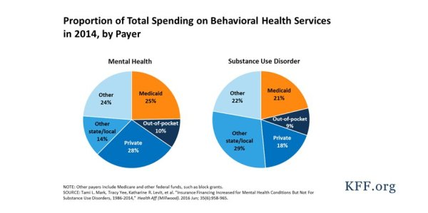 by the numbers largest behavioral health providers - 877×438
