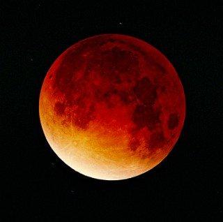 test ツイッターメディア - 次の、皆既月食は、7月28日になります。 https://t.co/NBp7M1yyKO