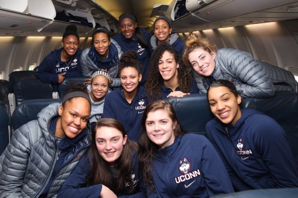 Image result for uconn huskies women's basketball