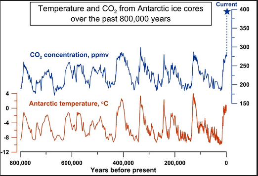 Image result for correlacion temperatura y CO2