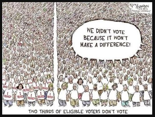 Image result for we didn't vote because it won't make a difference