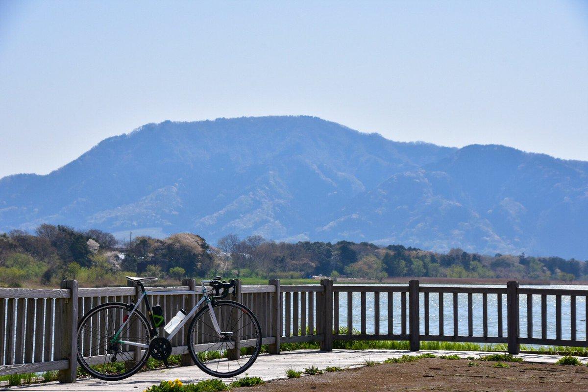 test ツイッターメディア - 今年初弥彦山ヒルクラだん。森の新緑感じまくりな良きライドだった!(なお久しぶりの自転車で疲労感ハンパない https://t.co/yn1V9CMLja
