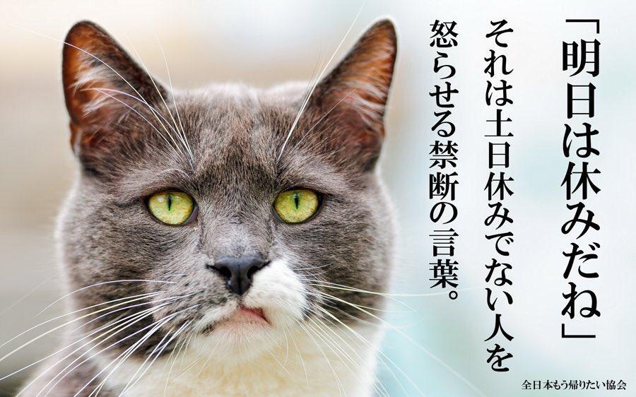 test ツイッターメディア - さてさて江津の道の駅にておやすみなさいー! 9号線で九州向けてまっす! 誰かいるかなー?? ではまた明日ー! あっ面白い画像見かけたので(笑) 俺はそんなこと思ってないけど(笑) https://t.co/1t56BKODy1
