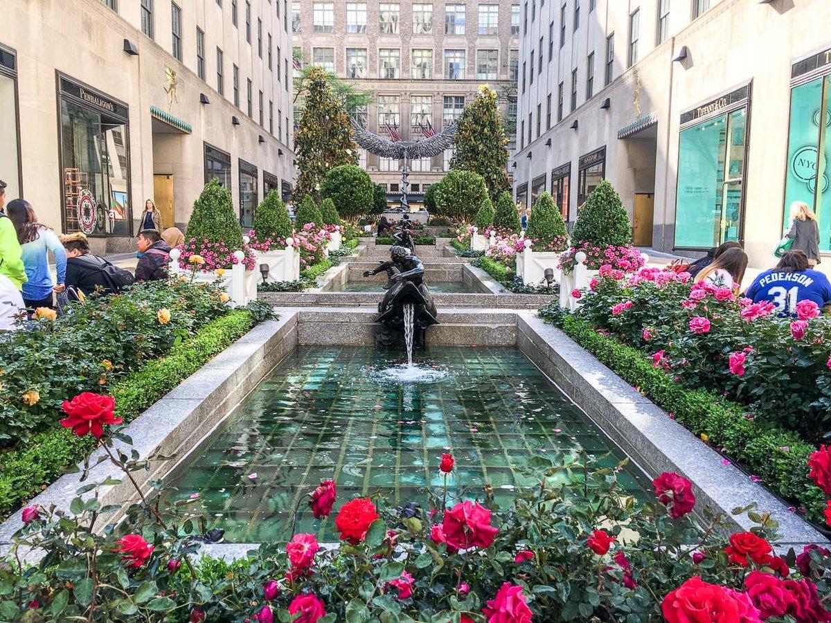"Rockefeller Center on Twitter: ""Roses are here for spring! Stop by ..."