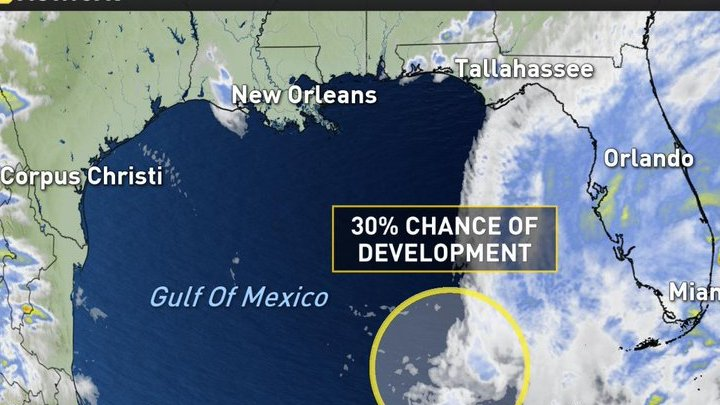 HD Decor Images » Weather Network US on Twitter   The National Hurricane Center has     Weather Network US on Twitter   The National Hurricane Center has flagged a  system in the Gulf of Mexico with a 30 percent chance of development this  week