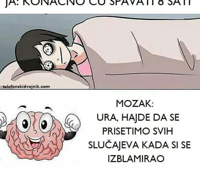 Brain Funny Insomnia Memes Mimovi Mozak Nesanica Serbian Sleep Smeh Smesno Spavanje Srpski Telefonskidvojnikpic Twitter Com Bvpnkcwym