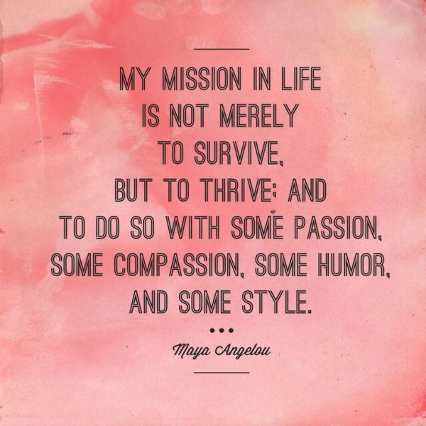 Vivian Risi on Twitter quotquotMy mission in my life is not