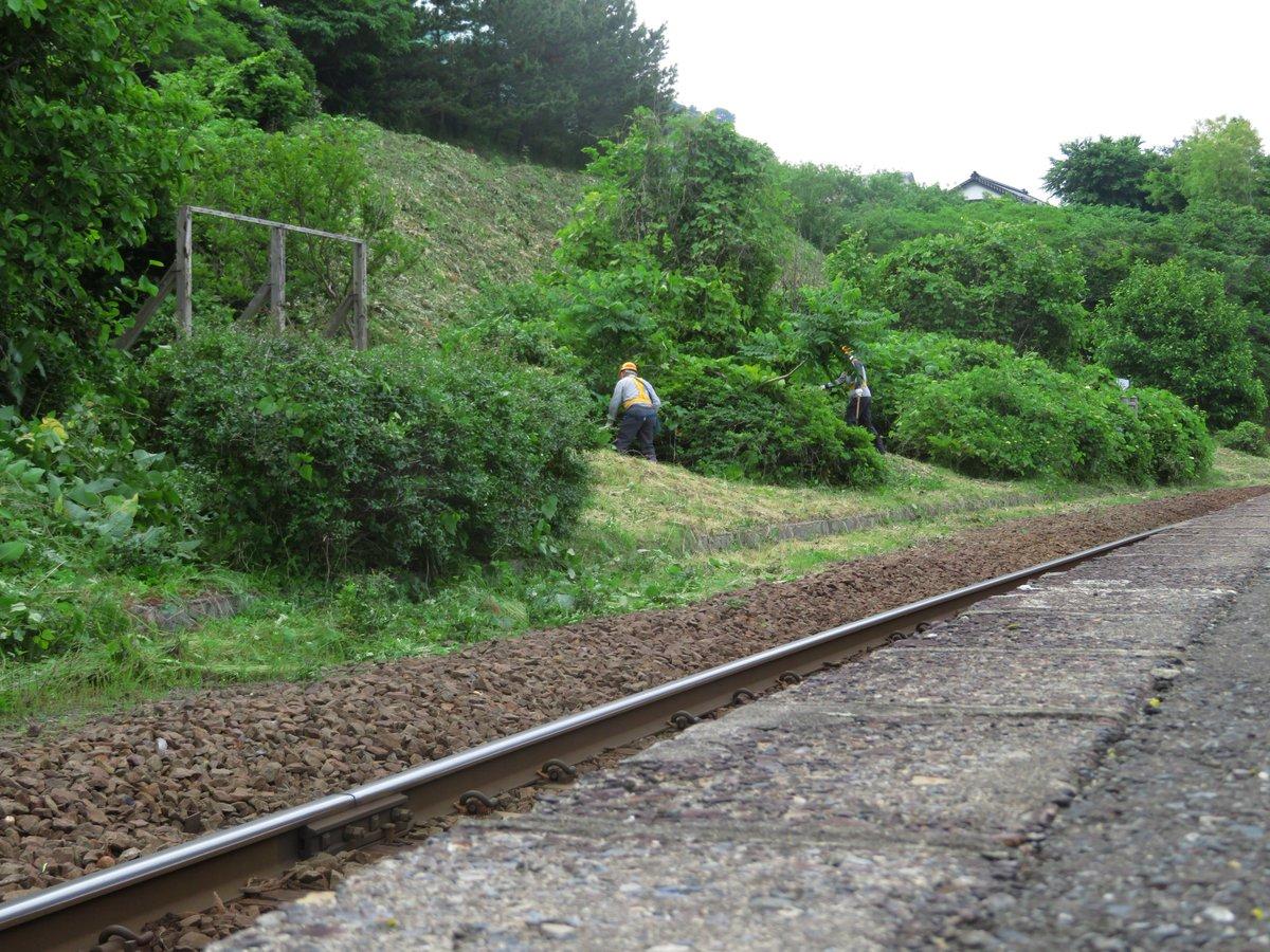 test ツイッターメディア - 明朝は毎年恒例 #五能線 #八森駅 の草刈りです。JR職員の方々と地元ガイドで一緒に行います。と言うわけで今宵はアルコールを控え目に・・・ https://t.co/DBul7Kxc5R