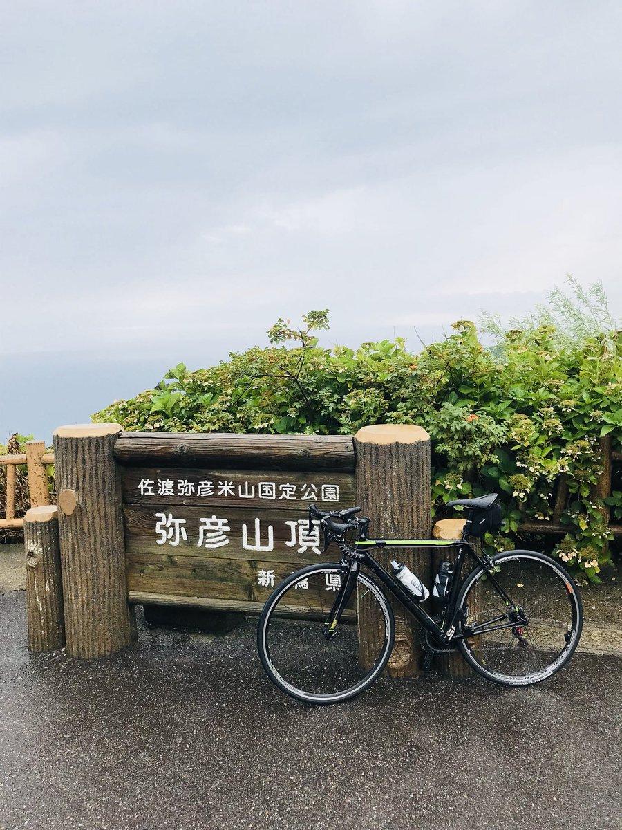 test ツイッターメディア - おとといですが、新潟ヒルクライムまでもうちょいなので、弥彦山スカイライン登って練習して来ました🚴♂️ 登っている途中でゲリラ豪雨に見舞われしまって、大変でした。 寒くて寒くてどうもならない、指先はふやけてアイホン指紋認証しない状態に!😅 #ロードバイクのある風景 #ロードバイク https://t.co/zMsXBoGwtT