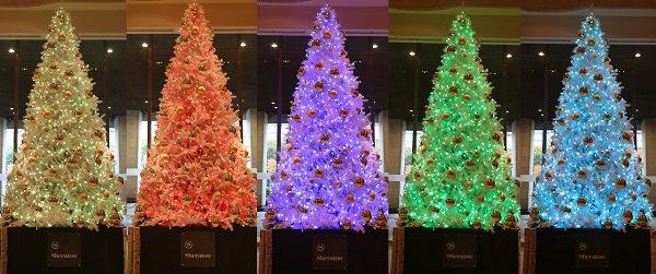 test ツイッターメディア - 【シェラトン都ホテル大阪】フォトジェニックなクリスマスツリーが登場! https://t.co/nFfsqwOtIm https://t.co/bKxFV4niah