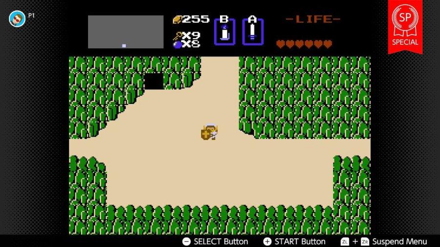 Zelda Living the life of luxury!