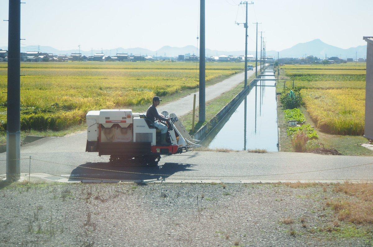 test ツイッターメディア - JR瀬戸大橋線で瀬戸大橋を越えまっする(ФωФ)ゞ https://t.co/jCnhkCayQv