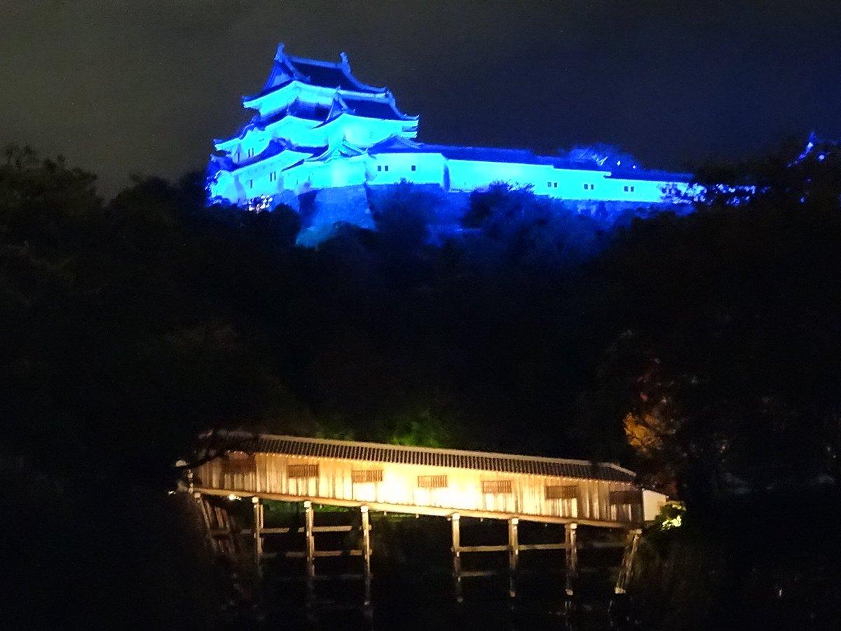 test ツイッターメディア - 今日の和歌山城は半分、いや全部青い! #和歌山城  #世界糖尿病デー #ブルーライトアップ https://t.co/zlonKiMeM6