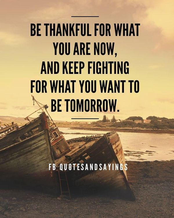 """Motivational Quotes on Twitter: """"Be thankful for what you ..."""