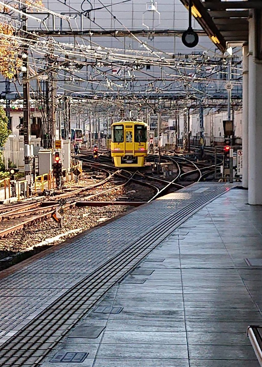 test ツイッターメディア - 黄色い電車 京王線で初めて見たかな… #京王線 #黄色い電車 https://t.co/lYU1FMkega