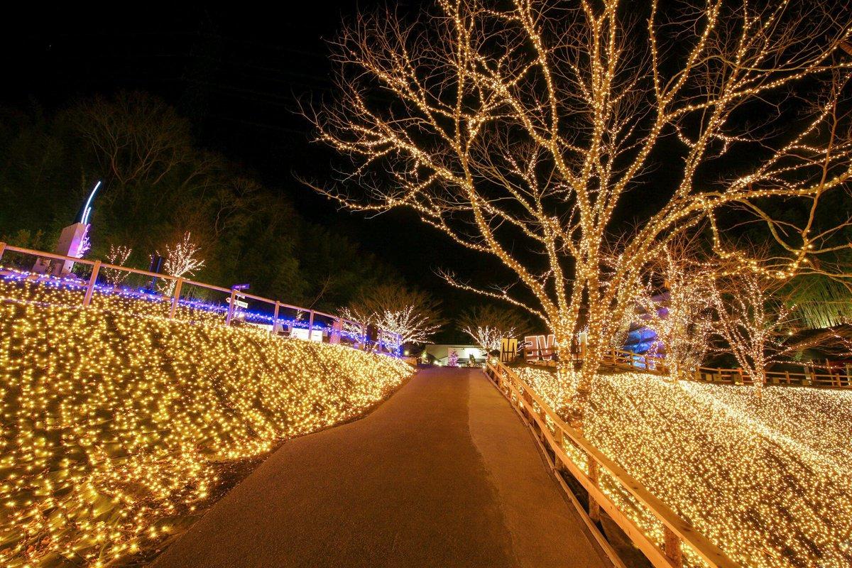 test ツイッターメディア - ネスタリゾート神戸     #写真撮ってる人と繋がりたい#写真好きな人と繋がりたい#ファインダー越しの私の世界#写真の奏でる私の世界#神戸 #ネスタリゾート神戸 #クリスマス #イルミネーション #クリスマスイルミネーション https://t.co/QFh36jLocm