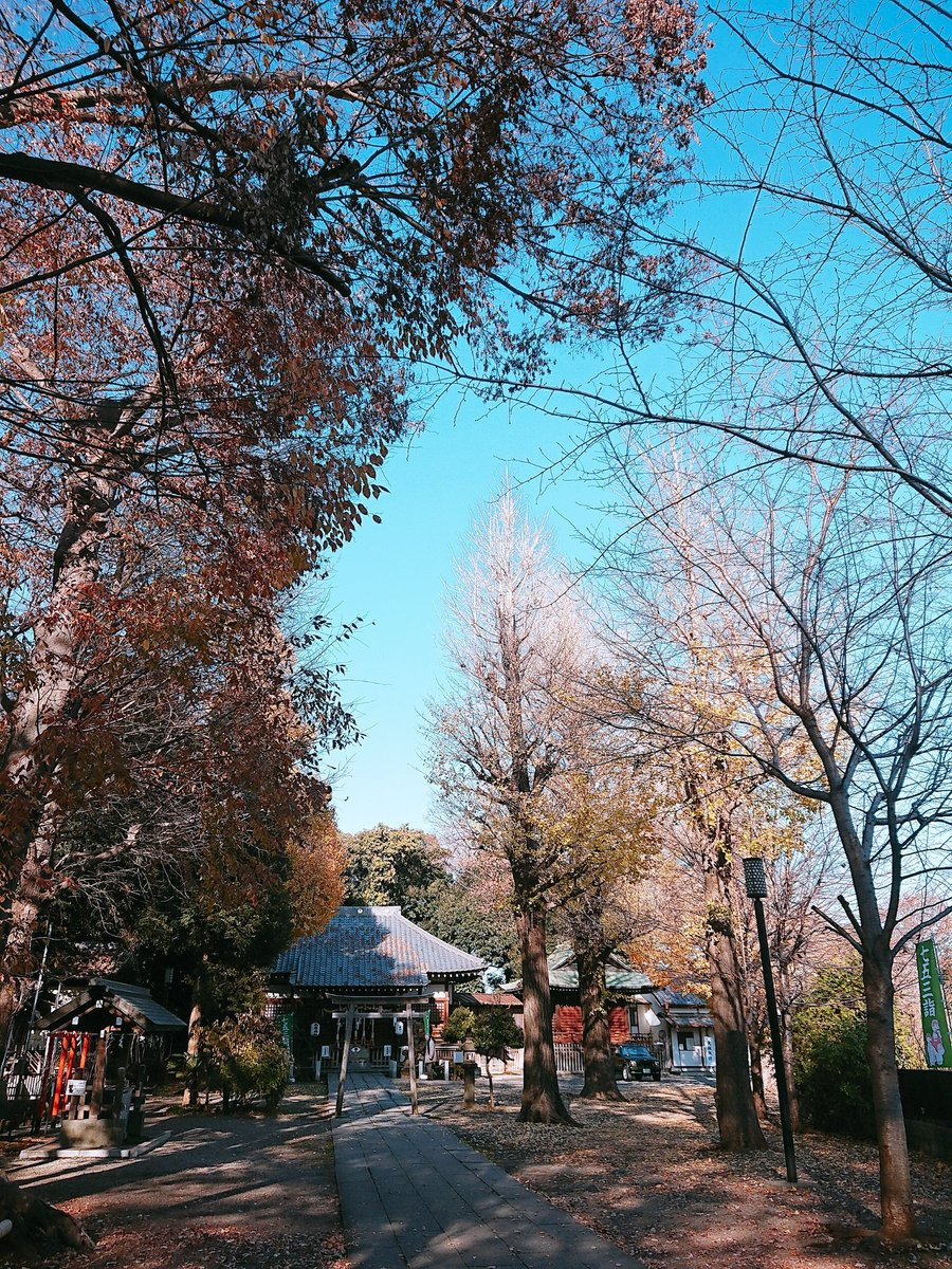 test ツイッターメディア - 今日の学校訪問の帰りに、上中里駅近くの平塚神社に参拝してきました。学校訪問も最終日、ご当地神社参拝も最終日なので、合格祈願から健康、安全、成績向上、よい人間関係に恵まれるように、商売繁盛といろんなことをお願いしてきました🙏 ちょっと欲張りすぎたかな…😌 https://t.co/LOAlSB3LVa