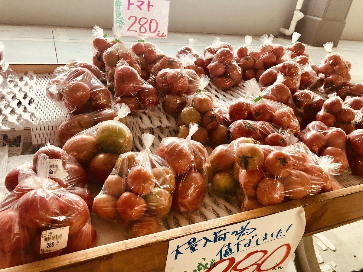 test ツイッターメディア - 体調が回復してきたので、農連市場横の農連ファームで野菜買ってきた。ここめちゃくちゃ安くて助かる! 白菜、キャベツ、大根とか100円台で買えるしトマトも安いよー! https://t.co/Nf5S61Rgoa
