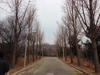 안산 산책