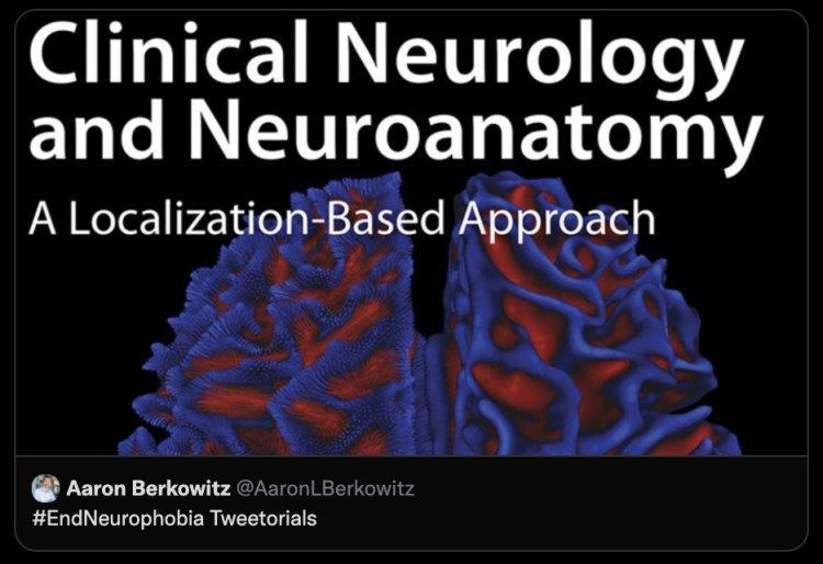 MedTweetorial: #Tweetorial Author: @AaronLBerkowitz   Type: #MedEd  Specialty: #Neurology #Neuro   Topics: #Myopathy #MuscleDisease #Dermatomyositis #Polymyositis #Statin #InclusionBodyMyositis #ElevatedCK #PompeDisease