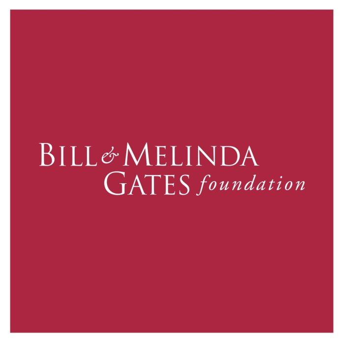 Bill & Melinda Gates Foundation Job Recruitment for Program officer (Abuja)