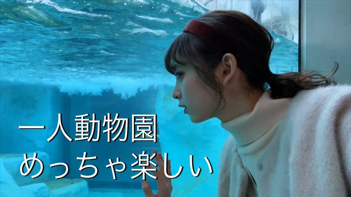 test ツイッターメディア - 今日の動画です!  やっと行けた上野動物園。でもひとり。 https://t.co/Ew9IA73iuN @YouTubeより https://t.co/ziwmirDUWz