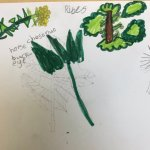 50 Things Bradford On Twitter We Posted This Link To A Wildflower Drawing Tutorial On Our Website Tab Lockdown The 50 Things Activities For The Whole Family During Covid Https T Co Wyojhuwm8a But I