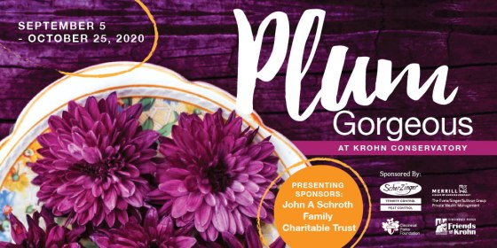 """Cincinnati Parks on Twitter: """"Mark your calendars for Krohn's fall floral  show, Plum Gorgeous, opening Sept. 5! Discover the many traditional autumn  plants on display, but in gorgeous shades of purple. You'd"""