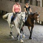 Senshistock Pose Reference على تويتر New Pose On Da Today A Pair Of Horseback Riders Https T Co Ua7vuxphuj