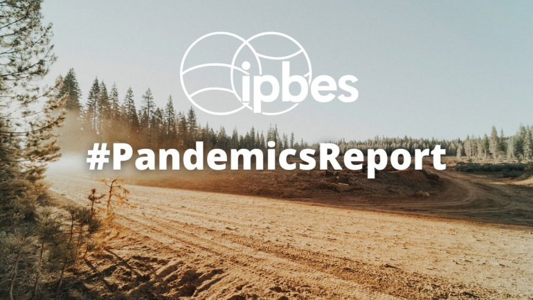 22 experts analyse the links between degradation of nature and pandemic risks: https://t.co/PDUod3F0YZ @IPBES @IPCC_CH @UNBiodiversity @CITES @UNCCD & @WHO We need action #ForNature #4Nature4Us Raise your voice👉https://t.co/mOsQpWd9S2