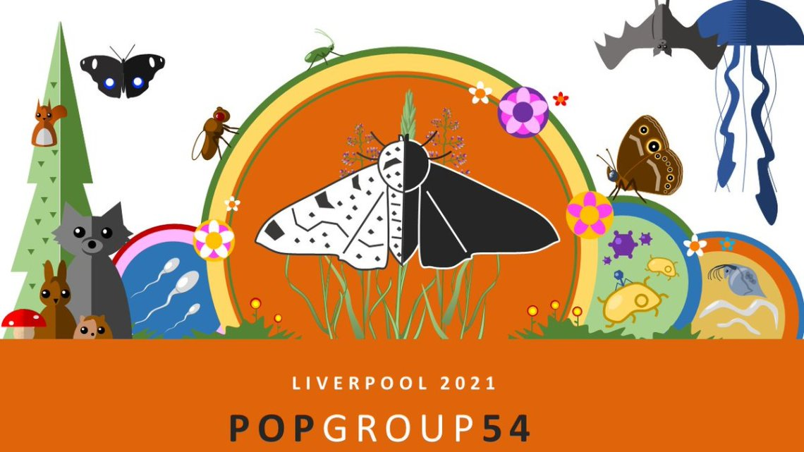 popgroup photo