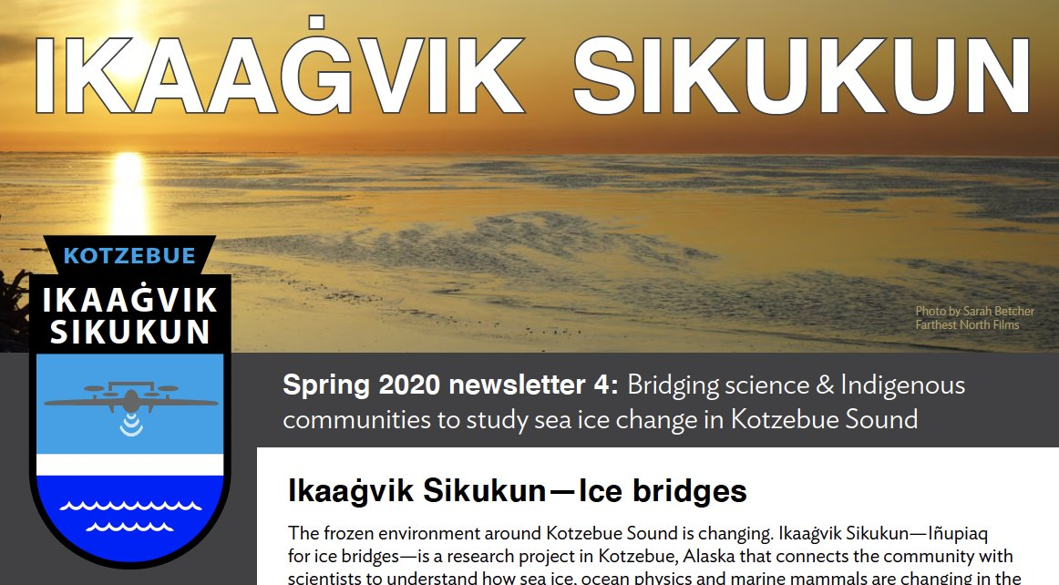Check out the latest from Ikaaġvik Sikukun, Elders Advisory Council lead environmental science for Kotzebue Sound. #akwx @Climatologist49 @KotzNews  @tammaq13