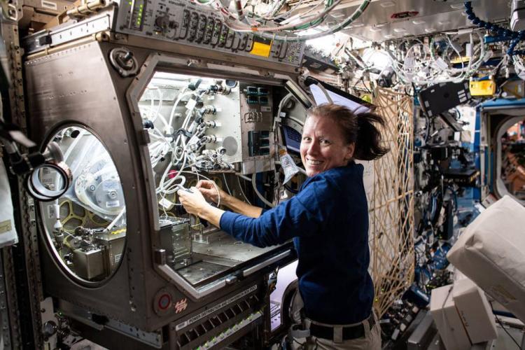 Risultato immagini per shannon walker twitter astronaut