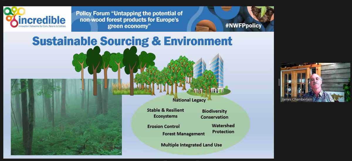 Tion of private forestland in alabama, usa. Incredibleforest On Twitter The Forest Market Value Across Europe Is About 3 5 Billion Meaning 20 5 Per Hectare Of Forest Land Explains Right Now James Chamberlain From Forestservice And Iufro At The