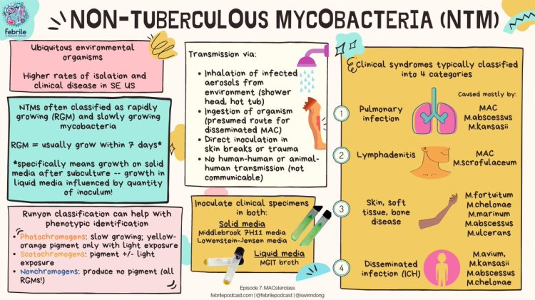 MedTweetorial: #Tweetorial Author: @febrilepodcast  Type: #MedEd #Podcast #GraphicMed Specialty: #InfectiousDisease #ID Topics: #NTM #NonTuberculousMycobacteria