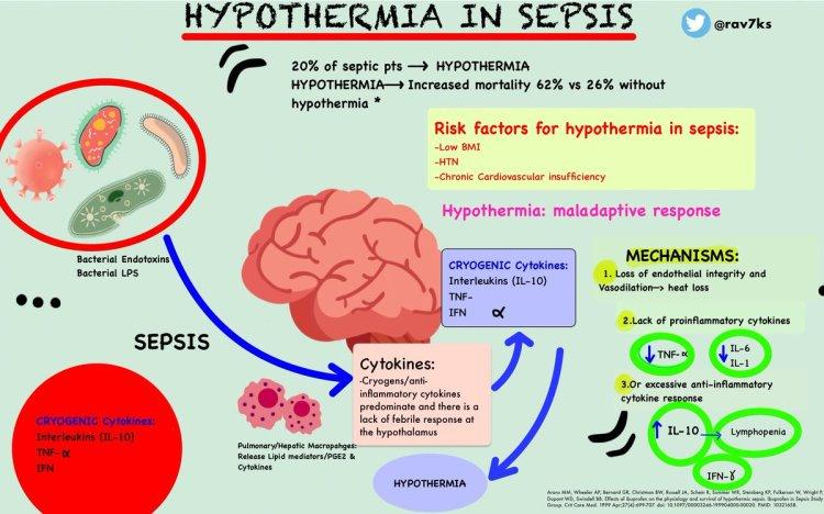 MedTweetorial: #Tweetorial Author: @rav7ks  Type: #Pathophysiology #MedEd Specialty: #InfectiousDisease #ID Topics: #Hypothermia #Sepsis #IL10 #IL1 #IL6 #TNF #Cytokines #AntiInflammatoryCytokineRelease
