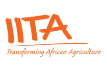 The International Institute of Tropical Agriculture (IITA) Recruitmwnt – OND/HND