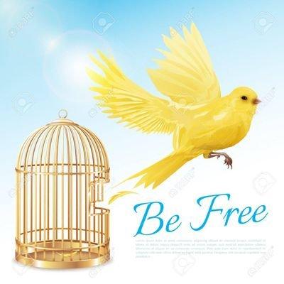 Free Bird On Twitter We Are Not Matured Enough To Understand The Matured Sherin Biggbosstamil Biggbosstamil3