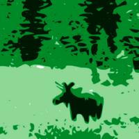 Elusive Moose (@elusive_moose )