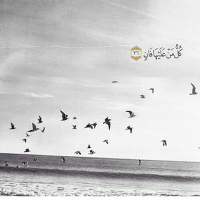أحمد المهيلب On Twitter إن الذين آمنوا وعملوا الصالحات إنا لا