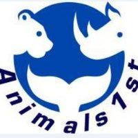 Animals1st (@Animals1st )