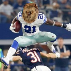 Image result for ewok ezekiel elliott