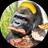 The profile image of minimini3150