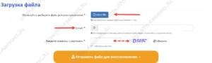 Файлды таңдау, пошта индикаторы және қалпақшалар