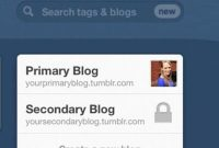 How to Change Primary Blog on Tumblr