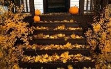 windows 10 halloween theme free wallpapers 4