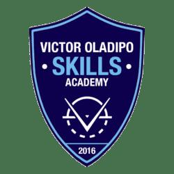 VOSkillsAcademy-250x250